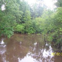 Abita River @ Hwy 36 North View, Абита-Спрингс