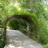 green woven tunnel, Бейкер