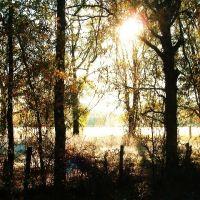 benton, early sunrise, Бентон
