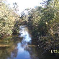 Pushepatapa Creek @ Dollar Road East View, Варнадо