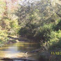 Pushepatapa Creek @ Monroe Creek Road East View, Варнадо