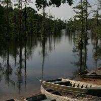 Bayou de Siard Boat Launch, Джексон