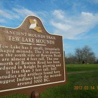 Tew Lakes Mounds, LA, Джексон