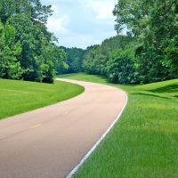 The amazing Natchez trace, Клейтон