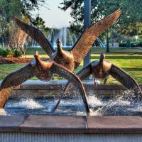 Civic Center grounds, Лейк-Чарльз