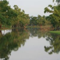 Reflections in Pond off Ouachita River, Монро