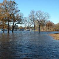 Ouachita River Flooded (again), Монро