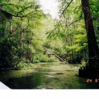 Lousiana - Pearl River, Пирл Ривер