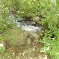 Nashoba Brook, Актон