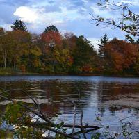 Icehouse Pond, Актон