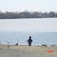 Spy pond, Арлингтон