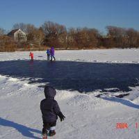 Frozen Spy pond, Арлингтон