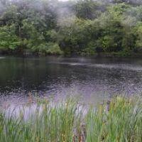 Pond @ Monotomy Rocks Park, Белмонт
