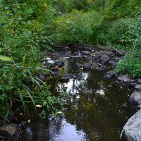 Beaver Brook, Белмонт