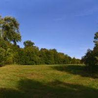 Lone Tree Hill, Белмонт