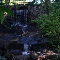 Waverley Oaks Duck Pond Dam, Белмонт