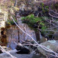 carvers pond 1, Бриджуотер