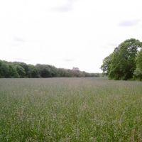state land field, Бриджуотер