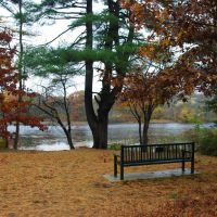 Carver Pond, Бриджуотер