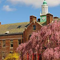 The Winsor School, Бруклин