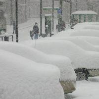 Snowstorm in Boston, Бруклин