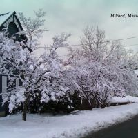 Milford, Massachusetts, Веллесли