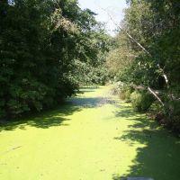 Blackstone Canal, Вест-Бойлстон