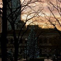 Copley Square Christmas Tree, Boston Public Library and Prudential Building, Вестон