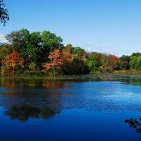 Louisa Lake (Autumn), Вимоут