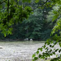 Kiwanis Park, Вимоут