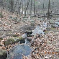 brook that feeds into the blackstone river, Вобурн