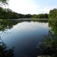 Louisa Lake, Вобурн