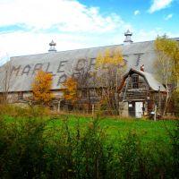 Maple Crest Farm barn, Rt. 169, Woodstock, CT, Дадли