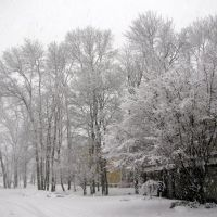 Η γειτονια μου χιονισμενη..!! My snowy neighborhood..!!, Данверс