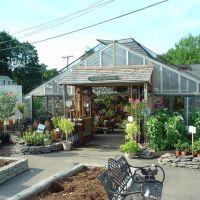 Wilsons Farm Garden Shop - Lexington, MA, Лексингтон