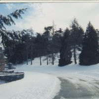 pine grove cemetary, lynn, ma, Линн
