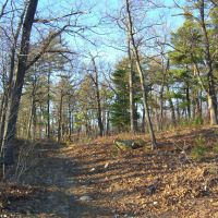 Trail in Lynn Woods, Линн