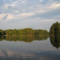 Field Pond Reflections, Линнфилд