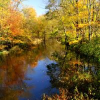Autumn Stream, Линнфилд