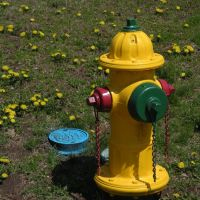 Fire Hydrant outside Weymouth Walgreens, Ловелл