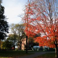 Tufts campus in autumn, Медфорд