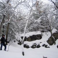 Middlesex Fells in Winter, Медфорд
