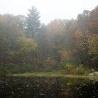 Pond in Taft Memorial Park, Uxbridge MA, Метуэн