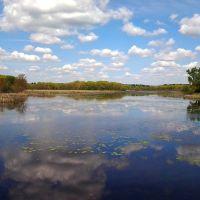Milford Pond/Cedar Swamp, Метуэн