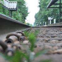 Hersey Station, Нидхам