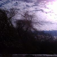 Фото #331529, Нортборо