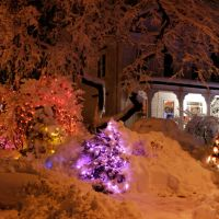Newton Highlands. Christmas Night, Ньютон