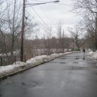 Bulloughs Pond, Ньютон