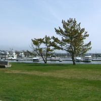 Prince Henry Park, New Bedford, MA, Оксфорд