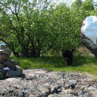 The White Buffalo, Пибоди